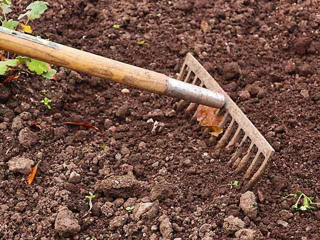 การเตรียมดินปลูกผักสวนครัว